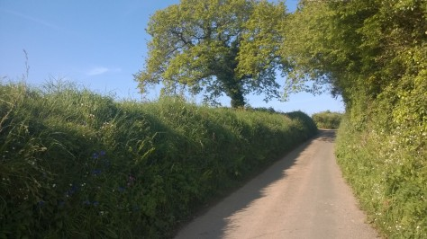 Cornwall Countryside communte
