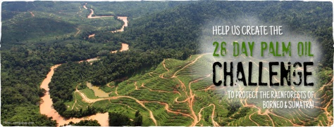 palm oil challenge