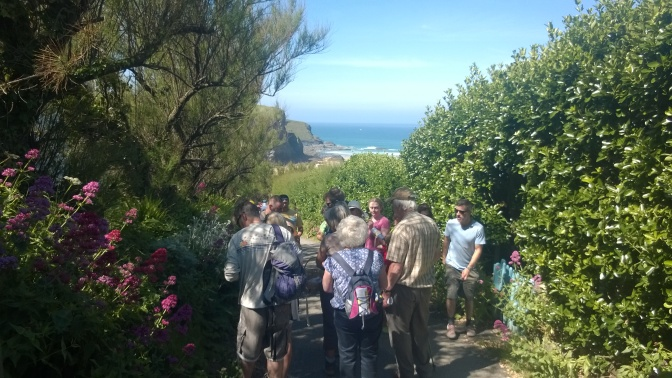 Bedruthan foraging course
