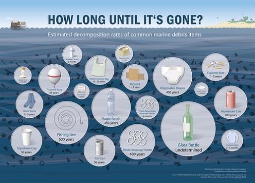 Plastic life infographic