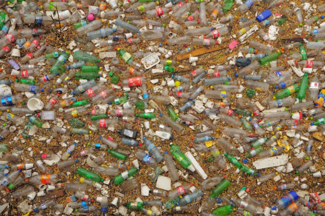 Understanding: Plastic Pollution
