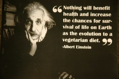 Albert einstein vegetarian quote 3