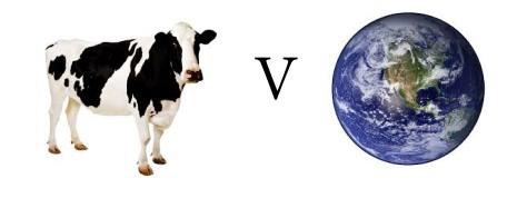 vegan vs sustainability