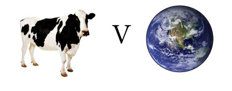 vegan vs sustainability