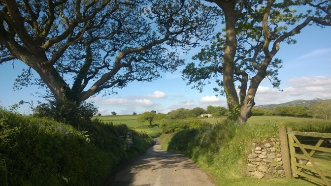 Find the Positives in Monday Morning: My Walk to Work