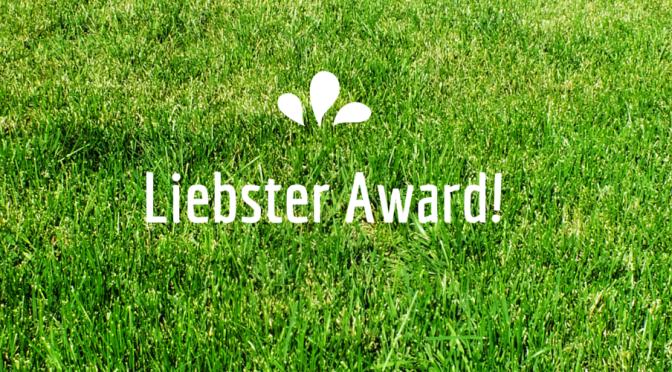 My Liebster Award
