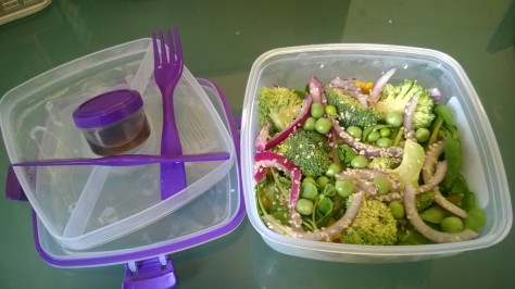 Sistema salad to go box review