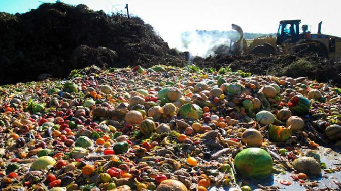 Tackling Food Waste: Can the Aussies Catch up with France?