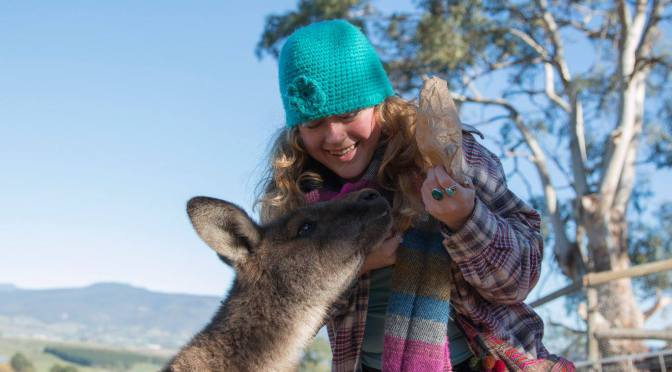 Explore and protect Australian Animals at Bonorong Wildlife Sanctuary